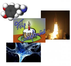 Neurotransmisor dopamina, neurona y transbordador ATV