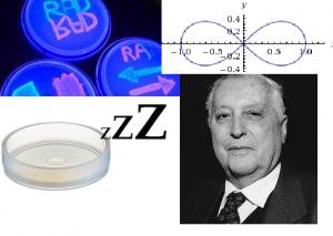 Ilya Prigogine, el infinito y las neuronas necesitan dormir